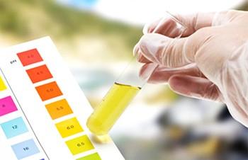 Como Medir o PH da Água