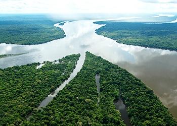 Os 5 maiores rios do Brasil