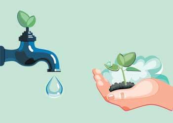 Como racionalizar e preservar a água