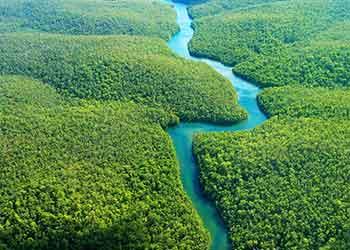 Os 10 maiores rios do Brasil