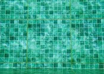 Como se livrar das algas na piscina